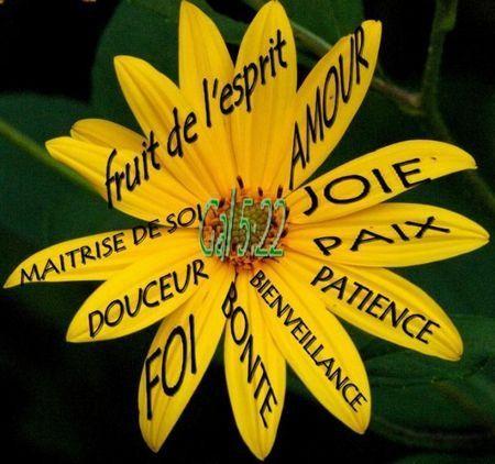 Michel blogue/Le Pardon, la  Charité et l'Amour de Dieu /réflexion d'avant,pendant et d'après carême/ A72d3c6d